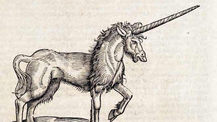 Unicorn Telah Dipercaya Orang Jerman Selama 350 Tahun, Ternyata Ini Fakta Sebenarnya