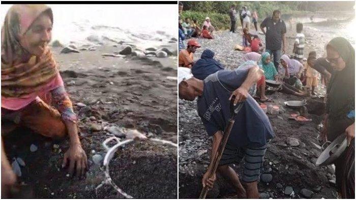 Hanya Pakai Panci Masak, Warga Sudah Bisa Dapatkan Butiran Emas di Pantai Namanan Pulau Seram