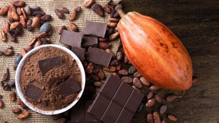 Cokelat  Hitam Punya Ragam Manfaat buat Rambut, Merangsang Pertumbuhan hingga Cegah Kerontokan