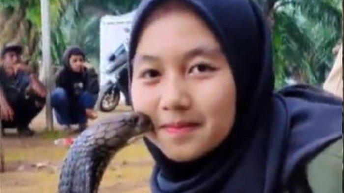 Gadis bernama Ica pamer aksi mencium ular kobra