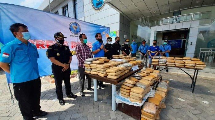 BNN Banten Gagalkan Pengiriman 301 Kilogram Ganja ke Bogor