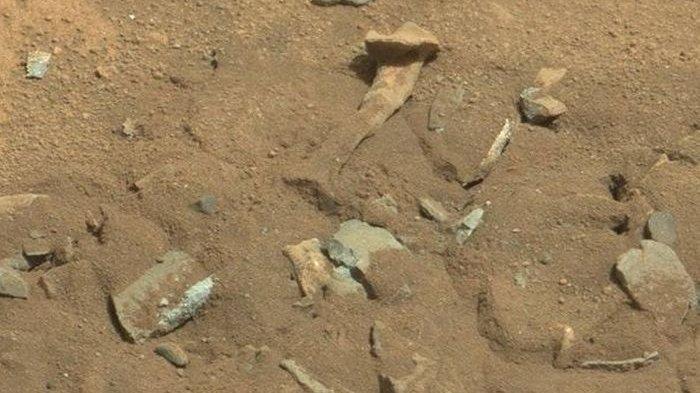 NASA Akhirnya Jelaskan Mengenai Temuan 'Tulang Paha' di Mars yang Sempat Heboh, Apa Ada Kehidupan?