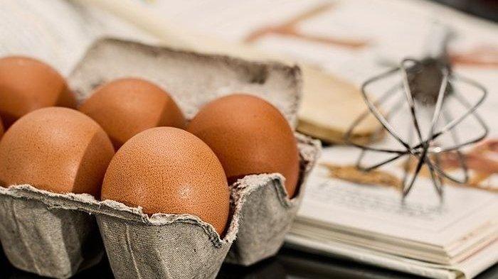 Ibu-ibu Wajib Tahu! Telur dengan Kondisi Cangkang yang Seperti Ini Wajib Dihindari