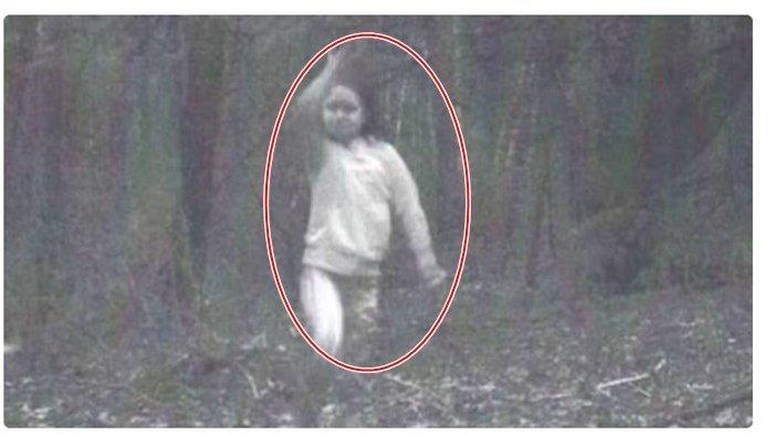 Kamera Pria Ini Rekam Gadis Kecil Saat Berburu di Hutan, Ternyata Sudah Meninggal Tertabrak Kereta