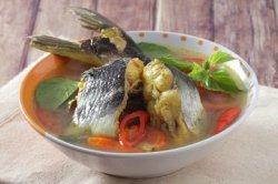Jangan Lagi Ditolak! Ikan Patin Faktanya jadi Obat Kolesterol Alami Hingga Cegah Stroke