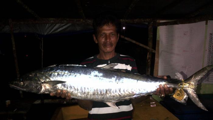 Ikan Tenggiri Abdullah Juara Nundak Tenggiri Selat Nasik