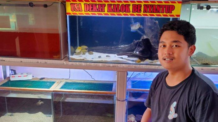 Komunitas pecinta ikan hias dan predator Belitung, sedang menunjukan berbagai koleksi ikan.
