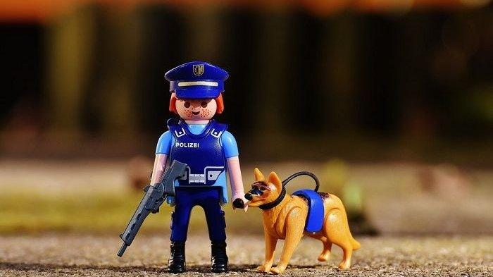 Sejarah Anjing Polisi atau K9 Ternyata Sudah Bermula Sejak 100 Tahun Lalu, Begini Asal Mulanya
