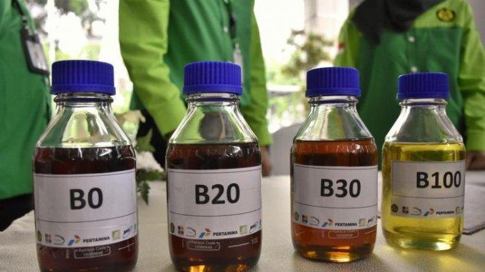 G20 Sepakat Genjot Penggunaan Biofuel untuk Tekan Emisi Gas Rumah Kaca