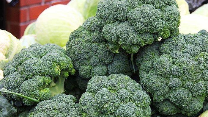 Mengonsumsi Sayuran Dapat Bantu Menjaga Imunitas Tubuh, Termasuk 3 Sayuran Ini