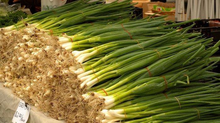 Sering Terlihat Mirip, Ini 4 Jenis Daun Bawang yang Sering Digunakan pada Makanan dan Perbedaannya