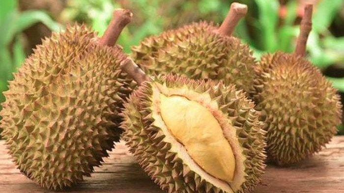 Jangan Konsumsi 6 Makanan Ini Bersama Durian, Bisa Keracunan Hingga Memicu Kematian