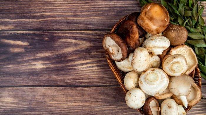 Jamur Ternyata Lebih Ampuh Jadi Obat Penyakit Mematikan, Cegah Kanker, Diabetes Hingga Jantung!