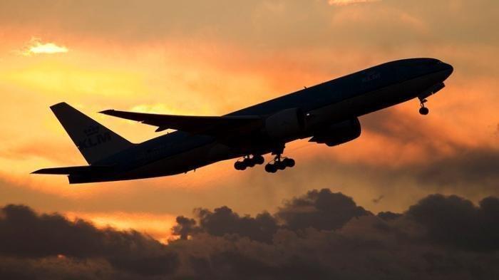 Nasib Penerbangan Indonesia di Mata Dunia, Negara Ini Mati-matian Melarang Hingga Dianggap Gagal
