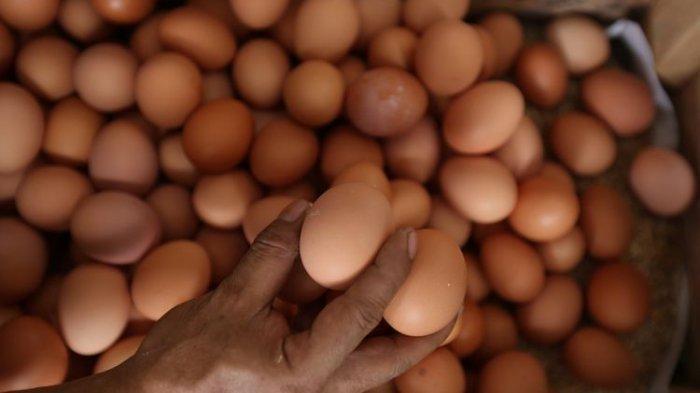 Tak Perlu Pusing, Ada Cara Terbaik untuk Bersihkan Lantai Agar Bau Amis Telur Pecah Hilang Seketika