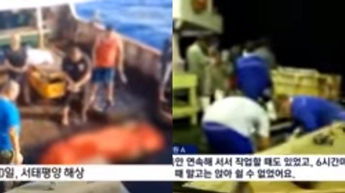 14 ABK WNI yang Diduga Mengalami Eksploitasi di Kapal Ikan China Akan Dipulangkan, Ini Jelasnya