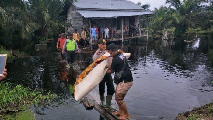 Bocah Ini Tewas Diterkam Buaya Saat Mandi Banjir di Depan Rumah