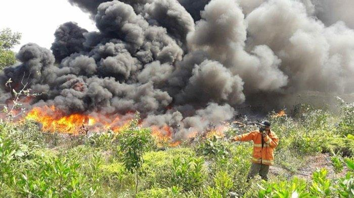 Eks Gudang Acang di Sukamandi Terbakar, Asap Hitam Pekat Sempat Membumbung Tinggi, Ini Foto-fotonya