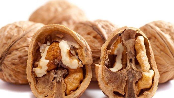 Walnut alias Kacang Kenari Terkenal Sebagai Kacang Paling Bergizi, Yuk Simak Faktanya