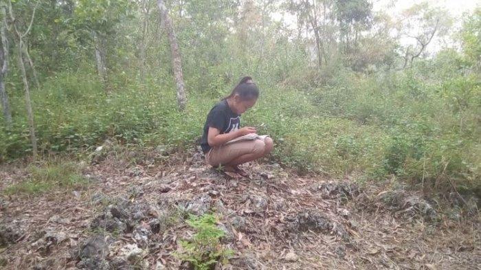 Kisah Siswa Berburu Signal Hingga Naik Gunung, Untuk Belajar Online dan Kirim Tugas ke Guru