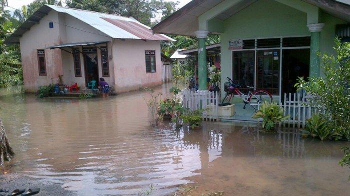 Dua Rumah di Sekitar Sungai Cerucuk Juga Terendam Banjir
