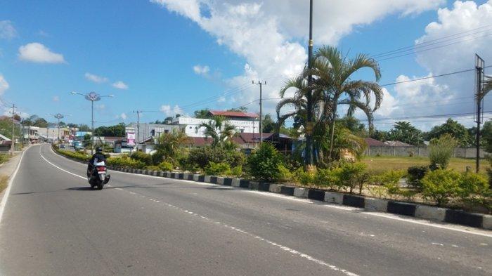 Pengawas Tanaman DPUPR Belitung Keluhkan Pencurian Pohon di Trotoar Jalan Jenderal Sudirman
