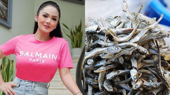 Suntik Salmon DNA 1 Miliar ala Krisdayanti, Rutin Makan Ikan Teri Bisa Datangkan Efek Luar Biasa!