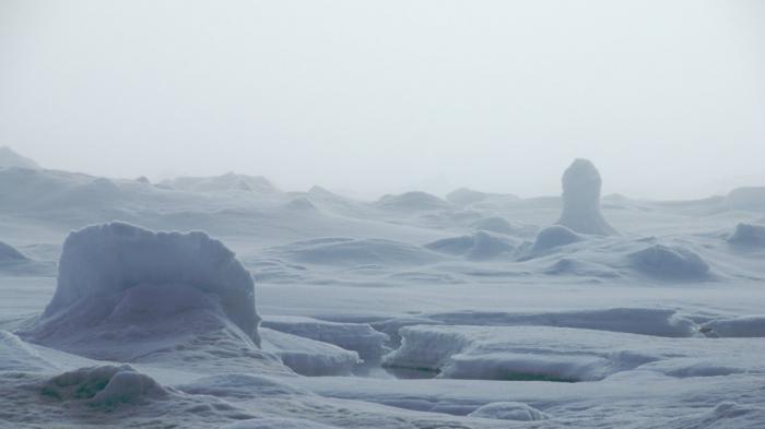 China Kian Agresif, Tak Cukup di Laut China Selatan, Tiongkok Berupaya Klaim Kutub Utara untuk ini