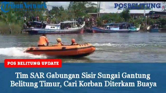 Konflik Manusia VS Buaya Kembali Terjadi di Belitung Timur, Wabup Khairil Bilang Begini