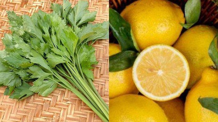 Air Rebusan Seledri dan Lemon Ampuh Obati Diabetes! Simak Panduan Resepnya
