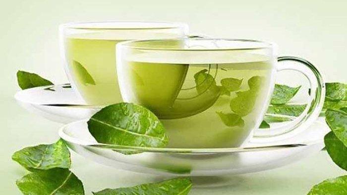 Minum Teh Hijau Sebelum Tidur, Penyakit Mematikan Ini Anti Masuk ke Tubuh!