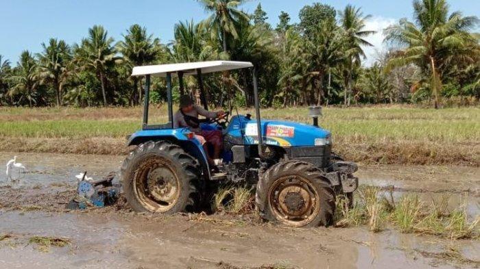 Mentan Dukung Kegiatan Ketahanan Pangan di Simeulue, Puji Sinergi Pemkab dab TNI