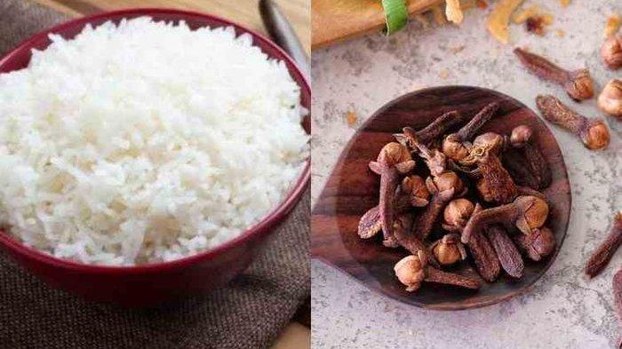 Coba Mulai Sekarang Masak Nasi dengan Cengkeh, Bisa Bantu Cegah Penyakit Mematikan Ini!