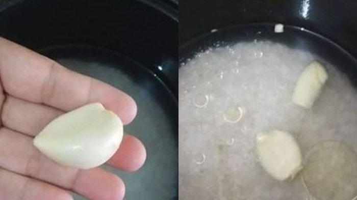 Benarkah Masak Nasi Dengan Bawang Putih Bisa Mengobati Penyakit Berbahaya, Simak Kata Ahli!