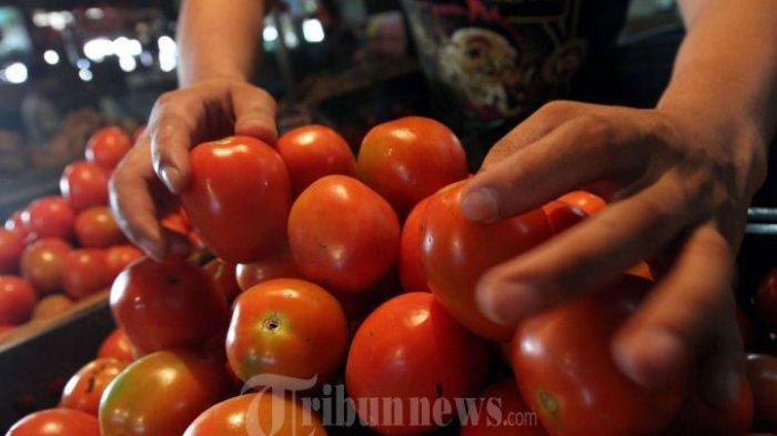 Jangan Sampai Salah saat Memasak, Meski Bahan Utamanya Sama, Ini Beda Tomato Puree dan Tomato Paste