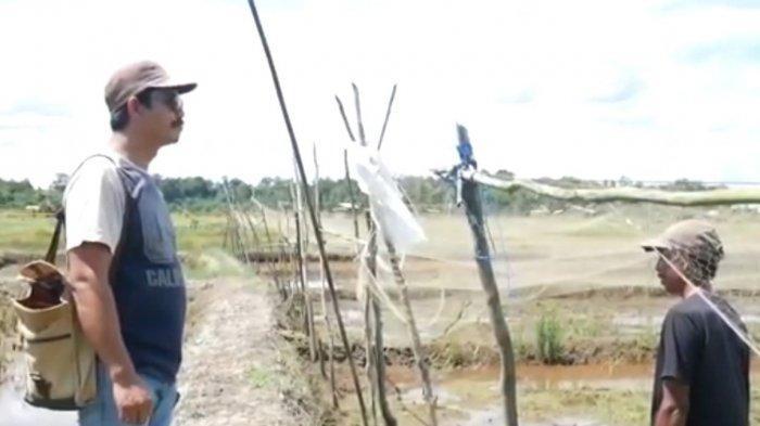 Desa Perawas Dukung Swasembada Pangan