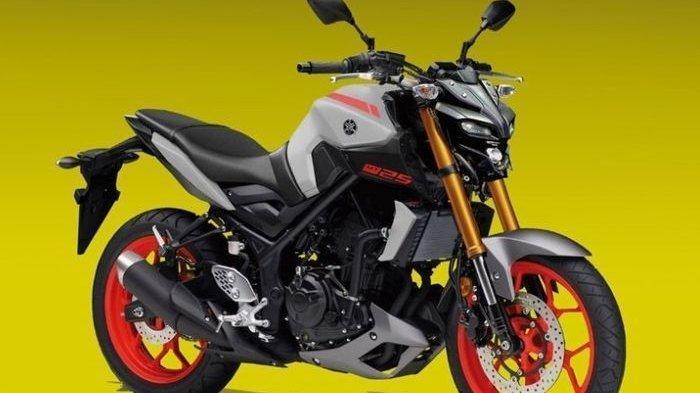 Yamaha MT-25 Facelift Bakal Meluncur di Indonesia, Segagah Inikah Tampilannya?