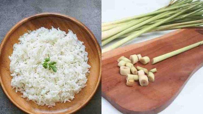 Nasi Putih Bisa Turunkan Berat Badan Kalau Dicampur Bahan Ini, Boleh Dicoba!