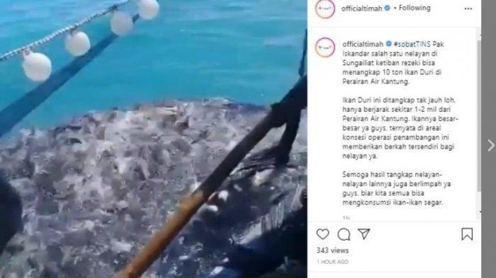 Video Nelayan Jaring 10 Ton Ikan Duri di Konsesi Tambang Laut Sungailiat