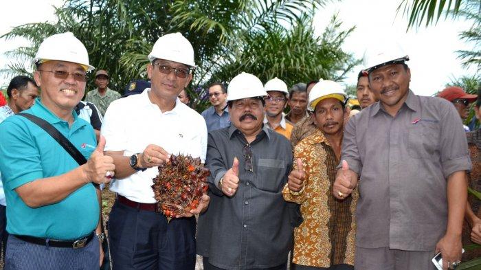 Koperasi Binaan PT Rebinmas Jaya Panen Tercepat - panen-sawit_20180226_092951.jpg