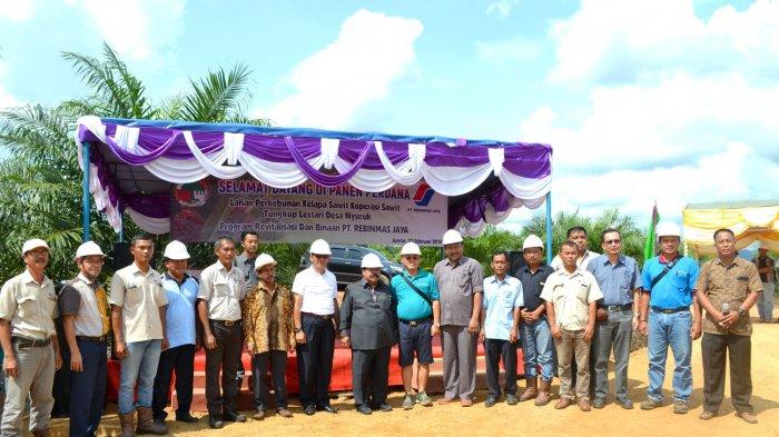 Koperasi Binaan PT Rebinmas Jaya Panen Tercepat - panen-sawit_20180226_093321.jpg