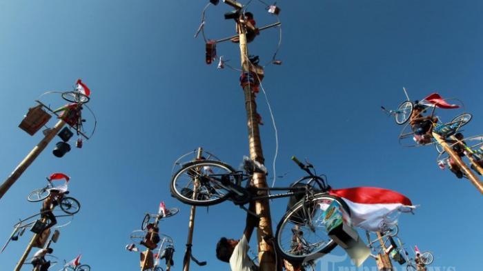 Kini Jadi Tradisi saat Perayaan Kemerdekaan RI, Dulu Panjat Pinang Jadi Hiburan bagi Kaum Kolonial