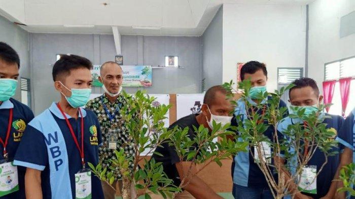 Gandeng PPBI Belitung, Warga Binaan Lapas Kelas IIB Tanjungpandan Diberi Pelatihan Bonsai