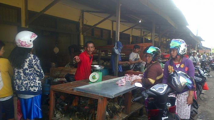 Jelang Tahun Baru 2016, Harga Ayam Potong di Belitung Meroket