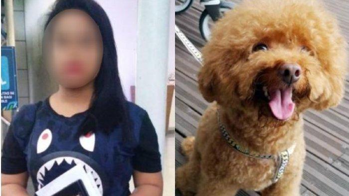 PRT Asal Indonesia Didakwa di Pengadilan Singapura Setelah Melempar Anjing Majikan dari Lantai Tiga