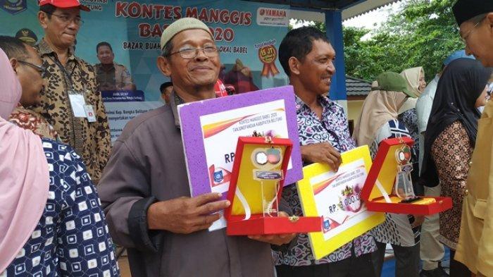 Zainawi Menangkan Kontes Manggis, Juri Sebut Potensi Manggis Bangka Belitung Layak Ekspor