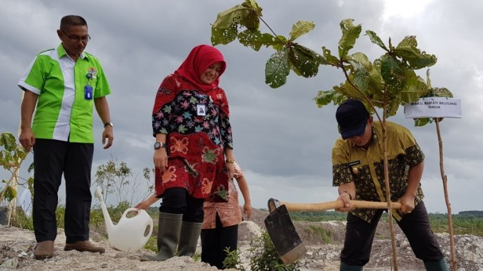 5000 Bibit Bantuan PT Taspen Ditanam di Lahan Kritis di Desa Lenggang Gantung