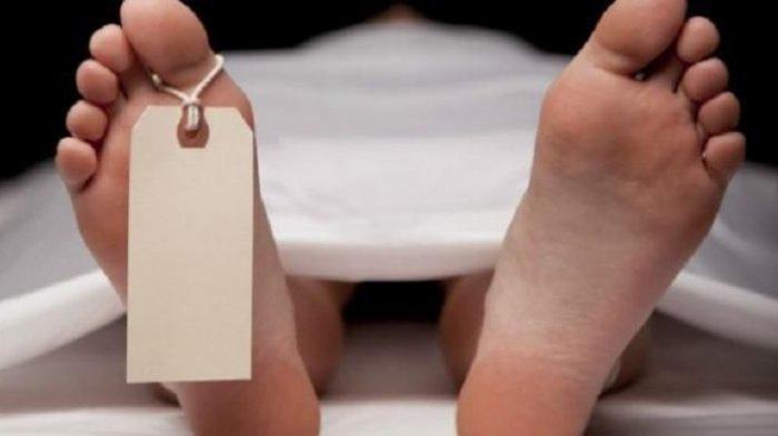 Jenazah Tanpa Kepala Ditemukan di Areal Persawahan Warga di Bondowoso