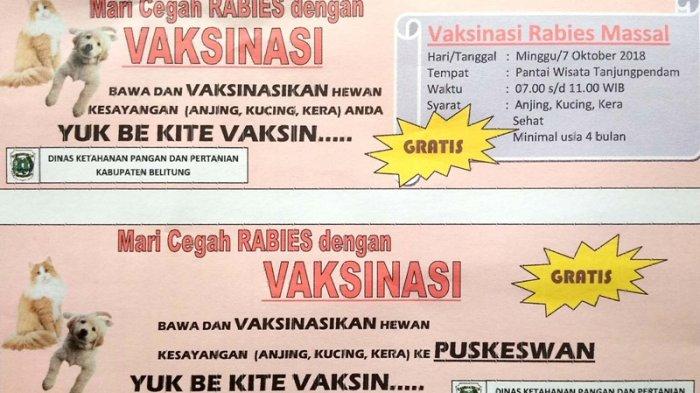 Cegah Rabies, Besok Dinas Ketahanan Pangan dan Pertanian Akan Lakukan Vaksinasi Rabie