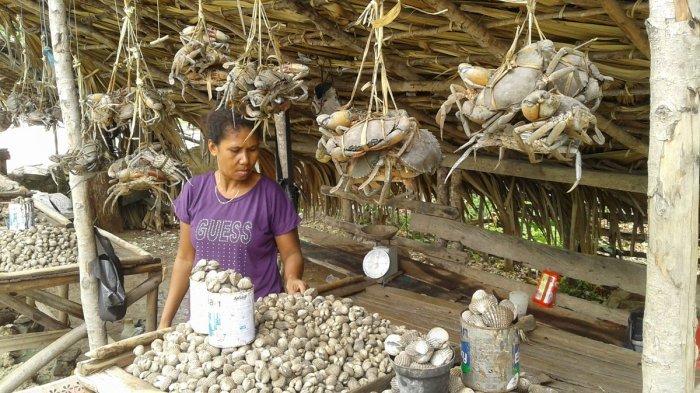Tak Melaut, Nelayan Kupang Tengah Malah Panen Kepiting dan Kerang Pesisir
